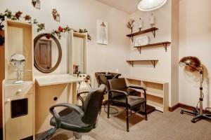 11 LS 1001 Salon